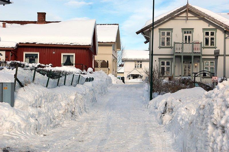 barneskoler i skien